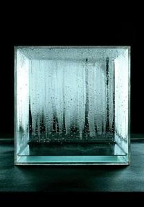 Kondensationswürfel by Hans Haacke